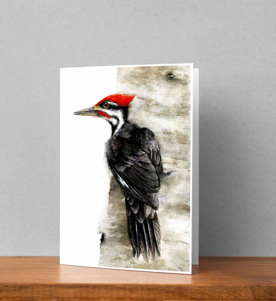 Woodpecker Note Card Set