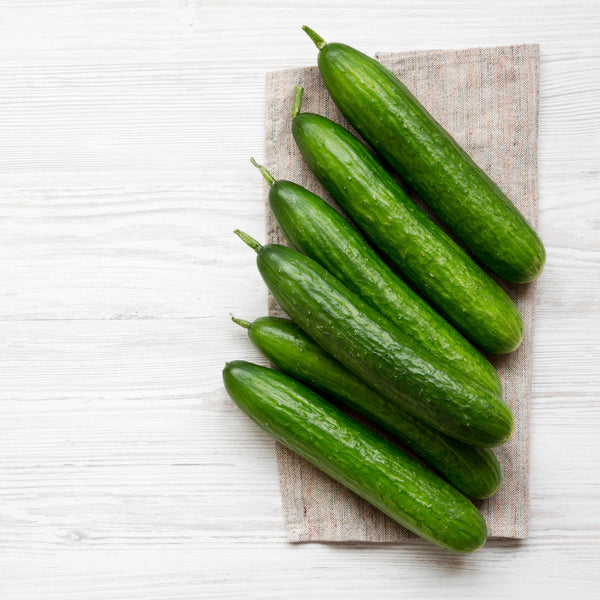 Seasonal Organic Cucumber Varieties