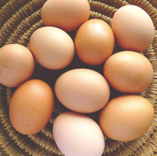 Pasture Raised Free Range Eggs (Dozen) - **Regular Weekly Delivery**