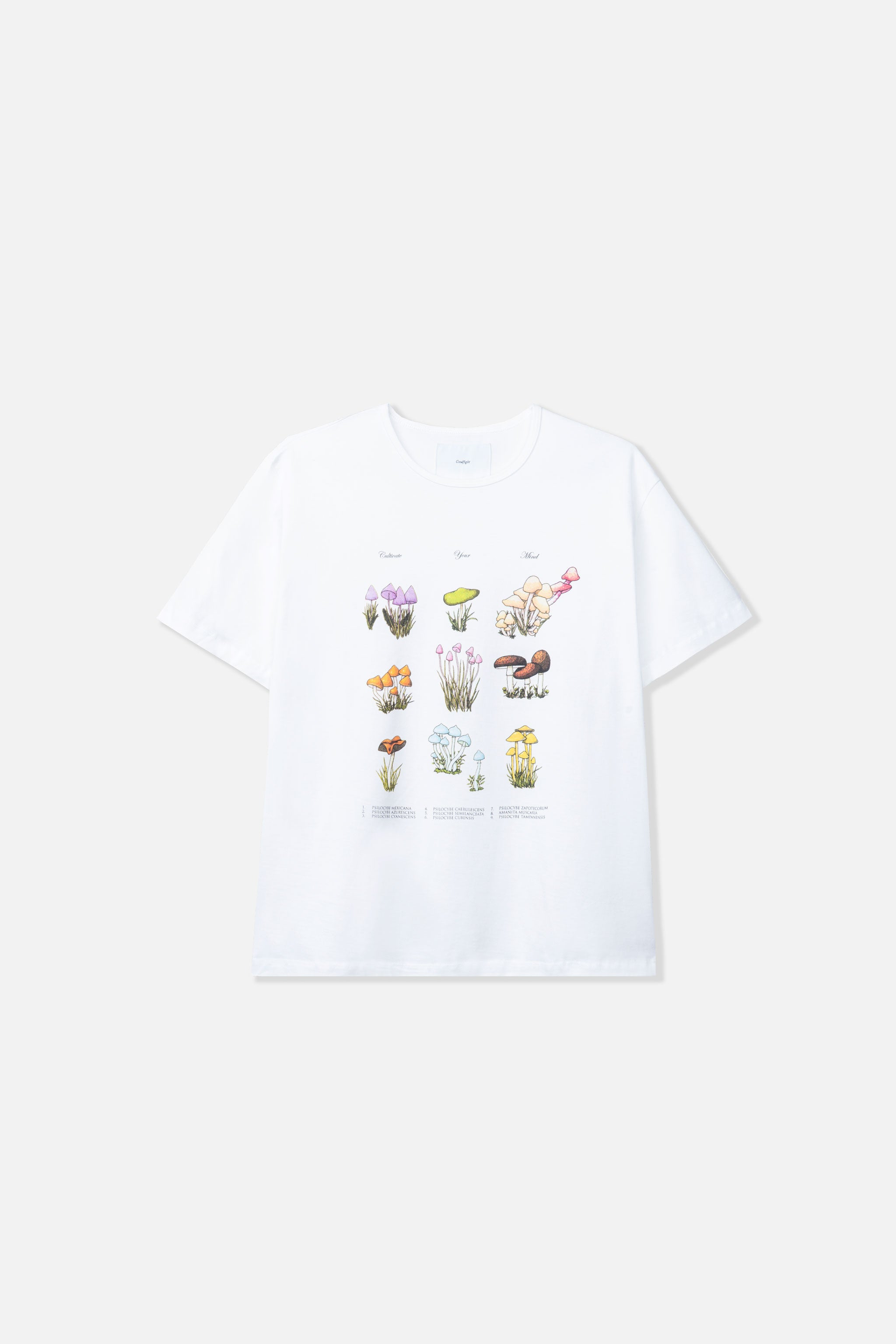 Goodfight Harvest SS Tee