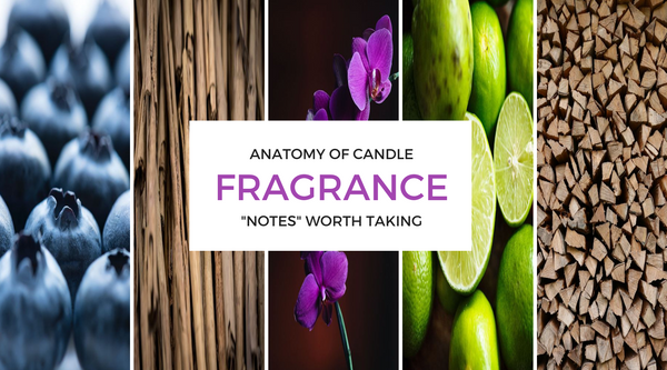 "ANATOMY OF CANDLE FRAGRANCE: ""NOTES"" WORTH TAKING"