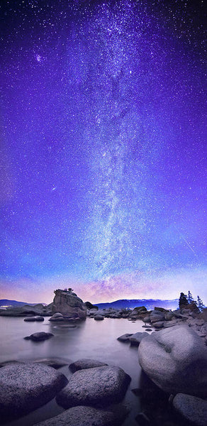 Star Gazer by Brad Scott  - Art Print