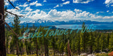 A Heavenly View By Brad Scott 48x24 - Metal Print
