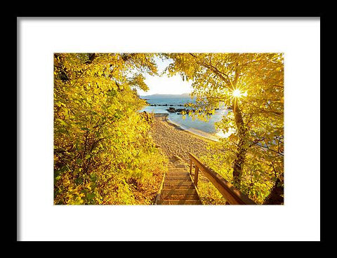 Autumn Steps - Lake Tahoe - Framed Print