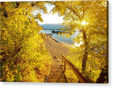 Autumn Steps - Lake Tahoe - Acrylic Print