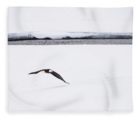 Bald Eagle Fly By - Blanket-Lake Tahoe Prints