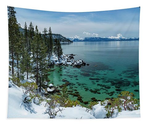 Blue Bird Secret Cove By Brad Scott - Tapestry