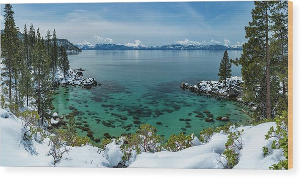 Blue Bird Secret Cove By Brad Scott - Wood Print