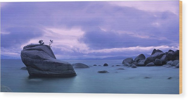 Bonsai Rock Blues By Brad Scott - Wood Print