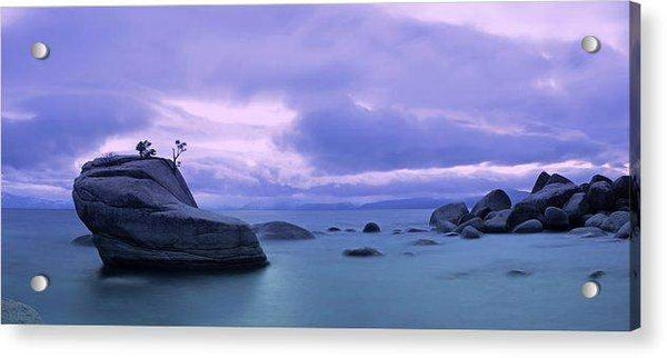 Bonsai Rock Blues By Brad Scott - Acrylic Print