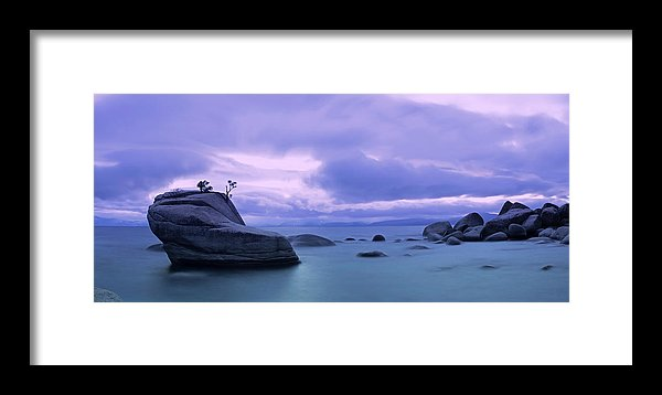 Bonsai Rock Blues By Brad Scott - Framed Print