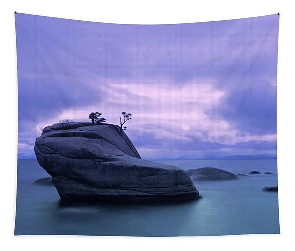 Bonsai Rock Blues By Brad Scott - Tapestry