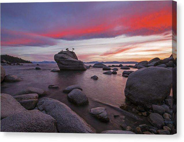 "Bonsai Rock On Fire - Canvas Print-10.000"" x 6.625""-Lake Tahoe Prints"