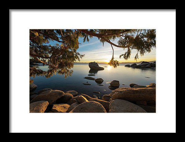 Bonsai Rock Sunburst - Framed Print by Brad Scott