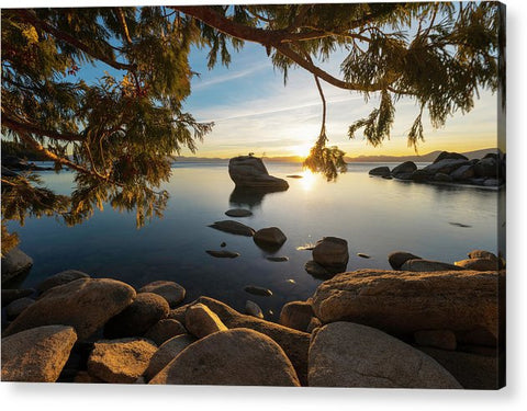 Bonsai Rock Sunburst - Acrylic Print by Brad Scott