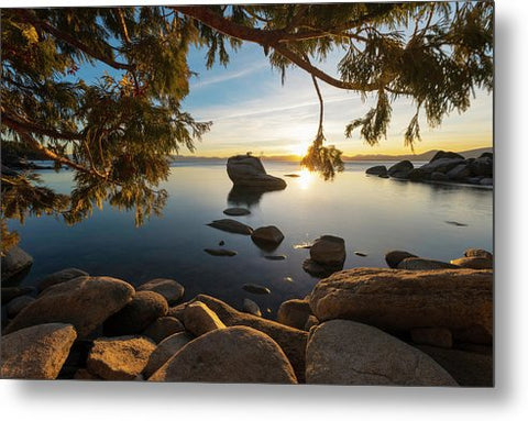 Bonsai Rock Sunburst - Metal Print by