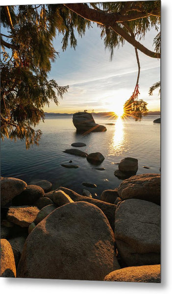 Bonsai Rock Sunburst Vertical - Metal Print by Brad Scott