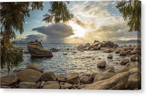 "Bonsai Rock Through The Trees By Brad Scott - Canvas Print-12.000"" x 6.625""-Lake Tahoe Prints"
