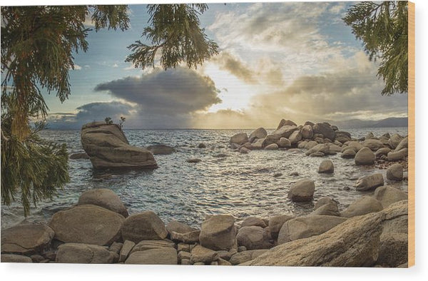 Bonsai Rock Through The Trees By Brad Scott - Wood Print