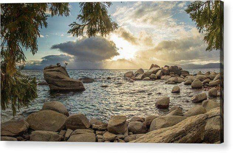 Bonsai Rock Through The Trees By Brad Scott - Acrylic Print