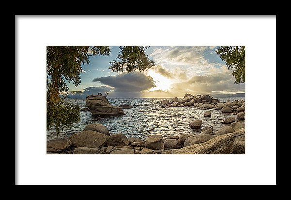 Bonsai Rock Through The Trees By Brad Scott - Framed Print