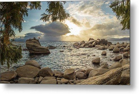 Bonsai Rock Through The Trees By Brad Scott - Metal Print