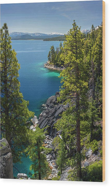 Dl Bliss Lookout By Brad Scott - Wood Print