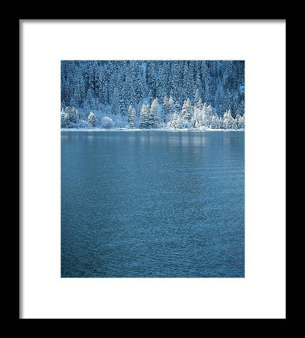 Emerald Bay Frozen Trees by Brad Scott - Framed Print