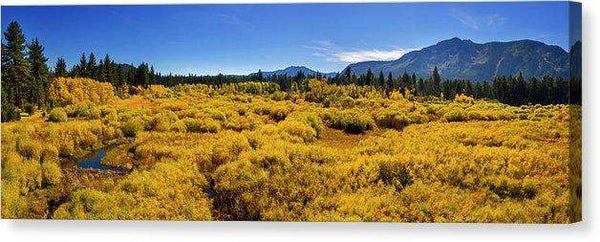 "Fall Colors At Kiva - Canvas Print-20.000"" x 6.625""-Lake Tahoe Prints"