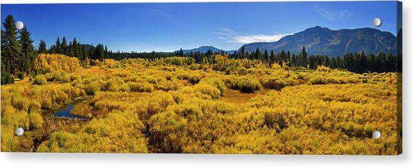 Fall Colors At Kiva - Acrylic Print