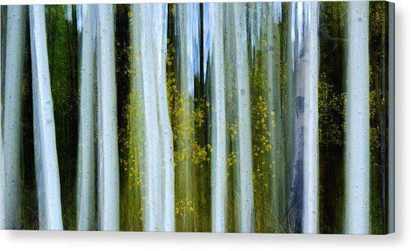 "Ghosts Of Fall - Canvas Print-12.000"" x 6.250""-Lake Tahoe Prints"