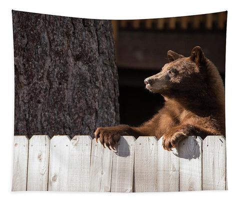Hey There Neighbor By Brad Scott - Tapestry