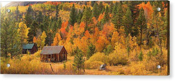 Hope Valley Fall Cabin By Brad Scott - Acrylic Print