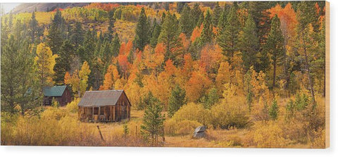 Hope Valley Fall Cabin By Brad Scott - Wood Print