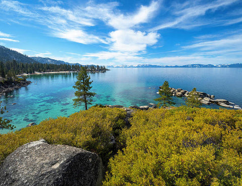 Manzanita View - Sand Harbor Lake Tahoe - Art Print