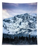 Mt Tallac Foggy Meadow - Tapestry