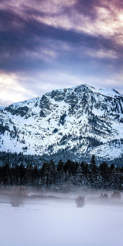 Mt Tallac Foggy Meadow - Art Print by Brad Scott