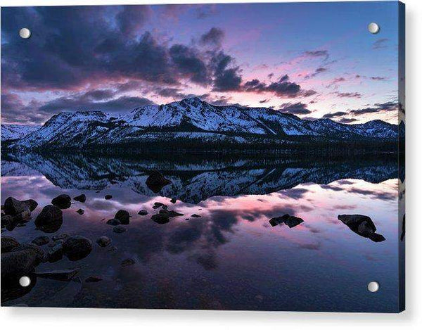 Rose Reflections By Brad Scott - Acrylic Print