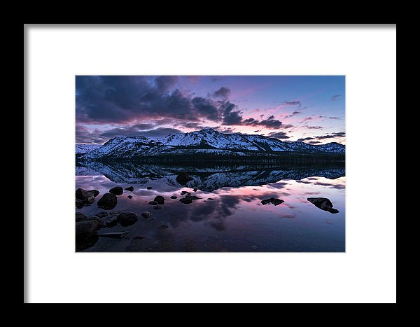 Rose Reflections By Brad Scott - Framed Print