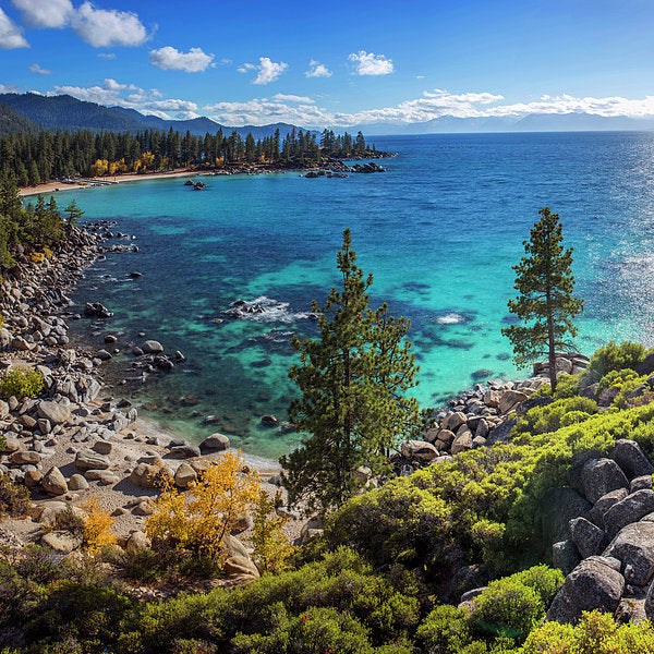 Sand Harbor Lookout By Brad Scott - Square - Art Print
