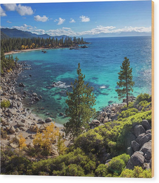 Sand Harbor Lookout By Brad Scott - Square - Wood Print