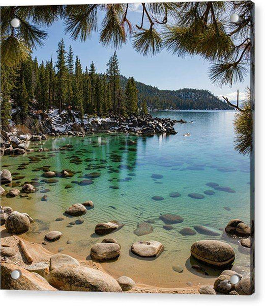 Secret Cove Through The Trees By Brad Scott - Acrylic Print