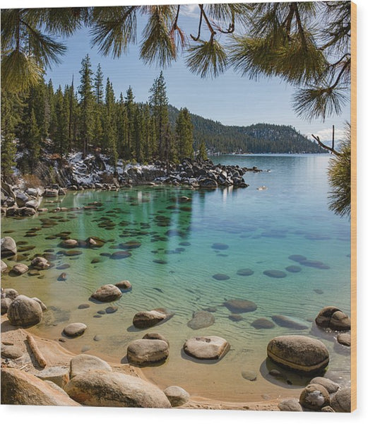 Secret Cove Through The Trees By Brad Scott - Wood Print