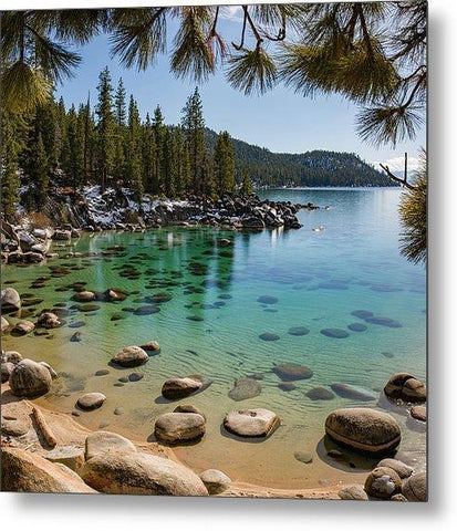 Secret Cove Through The Trees By Brad Scott - Metal Print-Metal Print-Lake Tahoe Prints