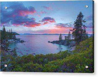 Secret Paradise by Brad Scott - Acrylic Print