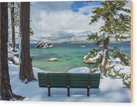 Sit And Relax By Brad Scott - Wood Print