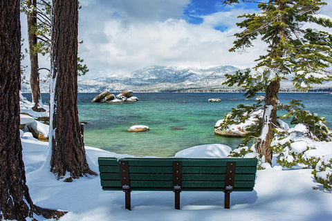 Sit And Relax By Brad Scott - Art Print