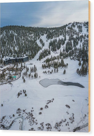 Squaw Valley Meadow Aerial - Wood Print by Brad Scott