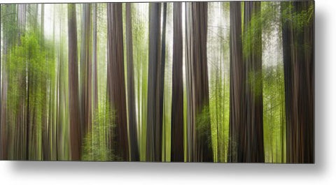 Take Me To The Forest - Metal Print