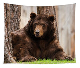 The King Of Tahoe By Brad Scott - Tapestry